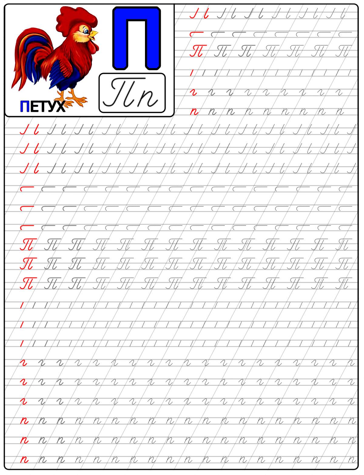 Пропись буквы п, с картинкой петух