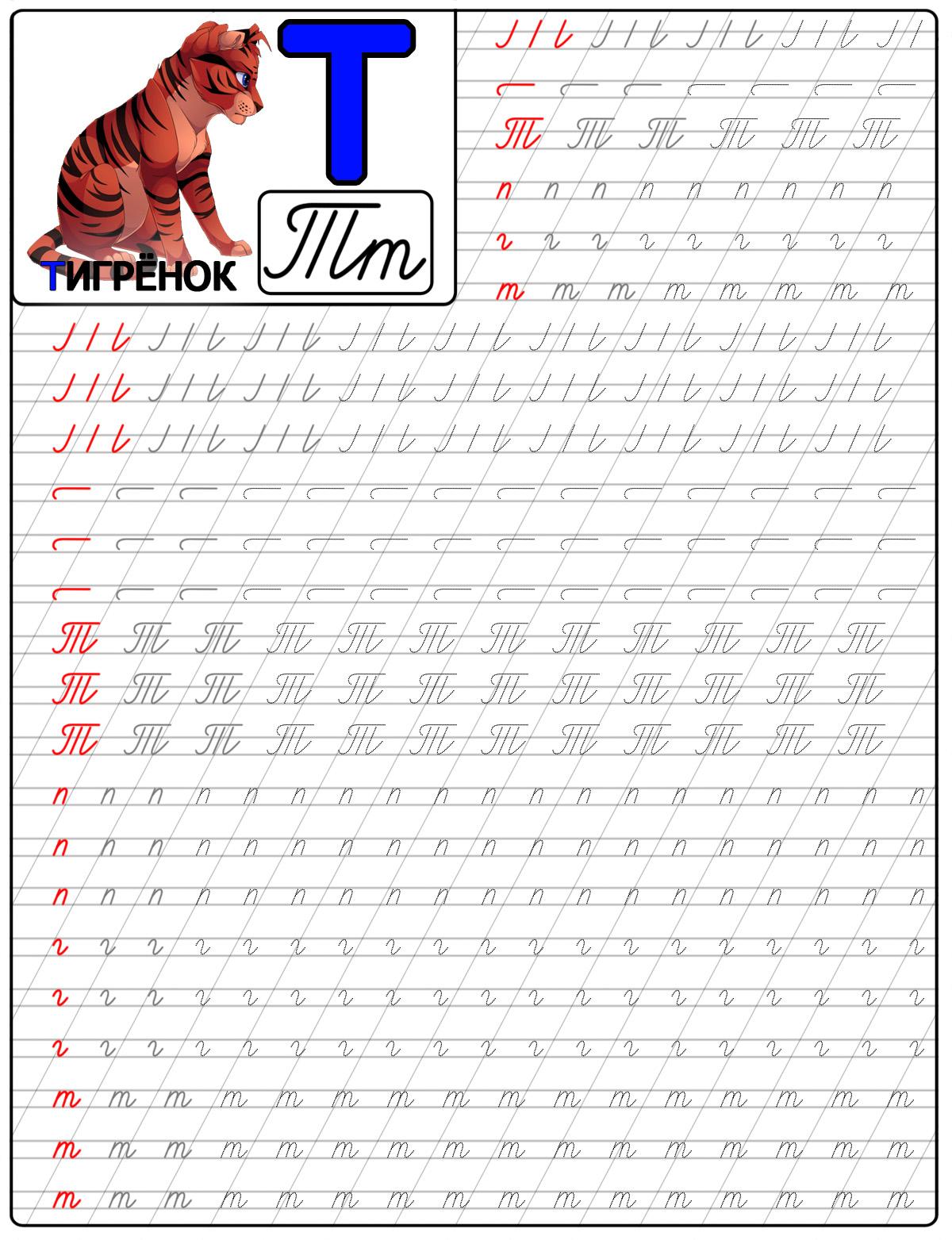 Пропись буквы т, с картинкой примером слова на букву т, тигренок