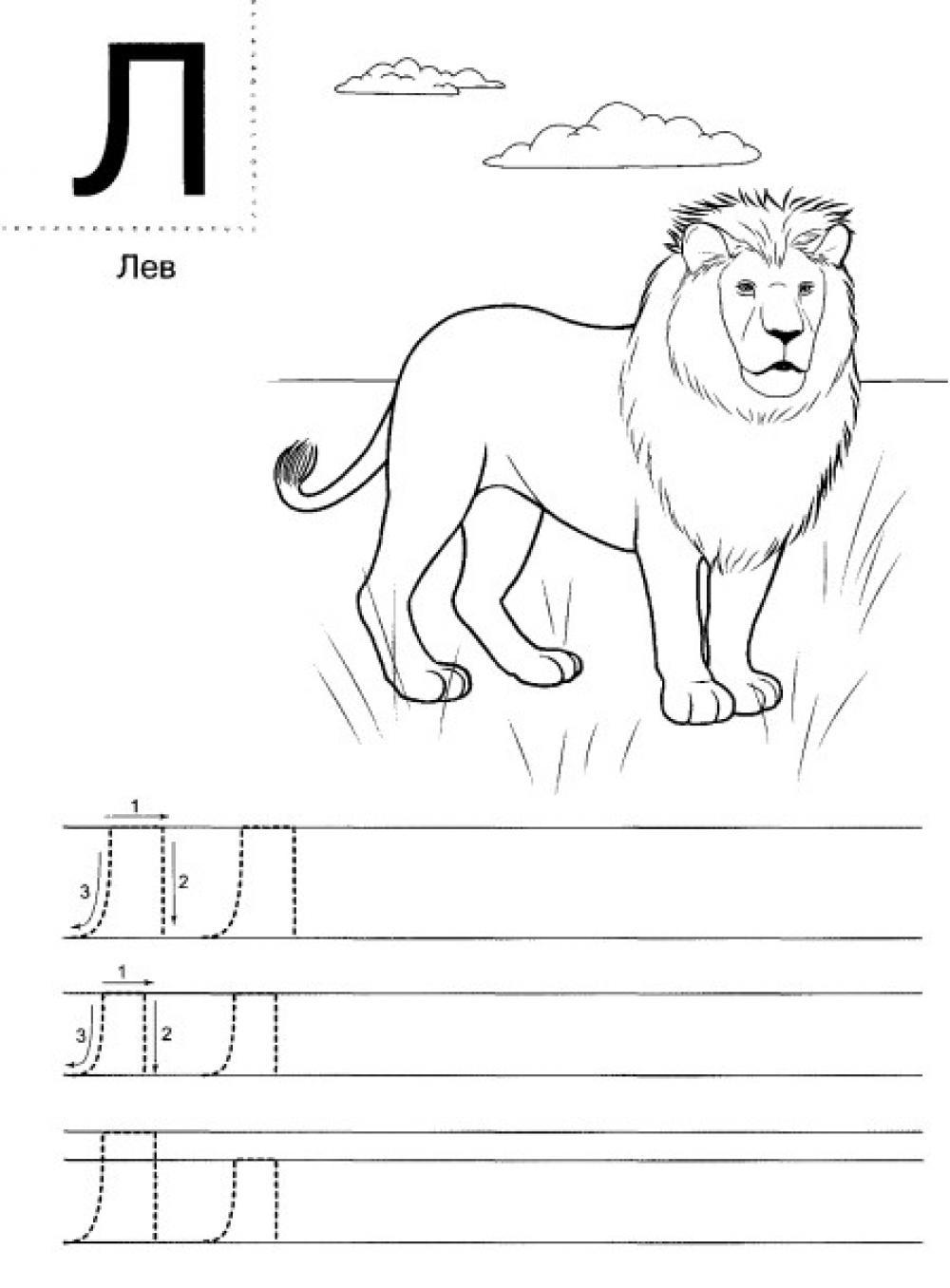 Пропись заглавной буквы л печатной, с раскраской лев