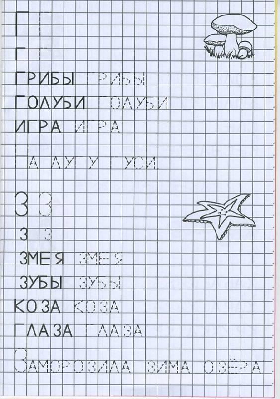 Печатные буквы г, з раскраски морская звезда, грибы