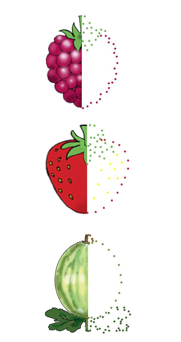Дорисуй половинки ягод