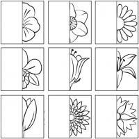 Дорисуй половинки цветов
