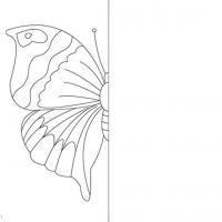 Дорисуй половинку красивой бабочки