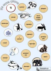 Составь из мухи слона