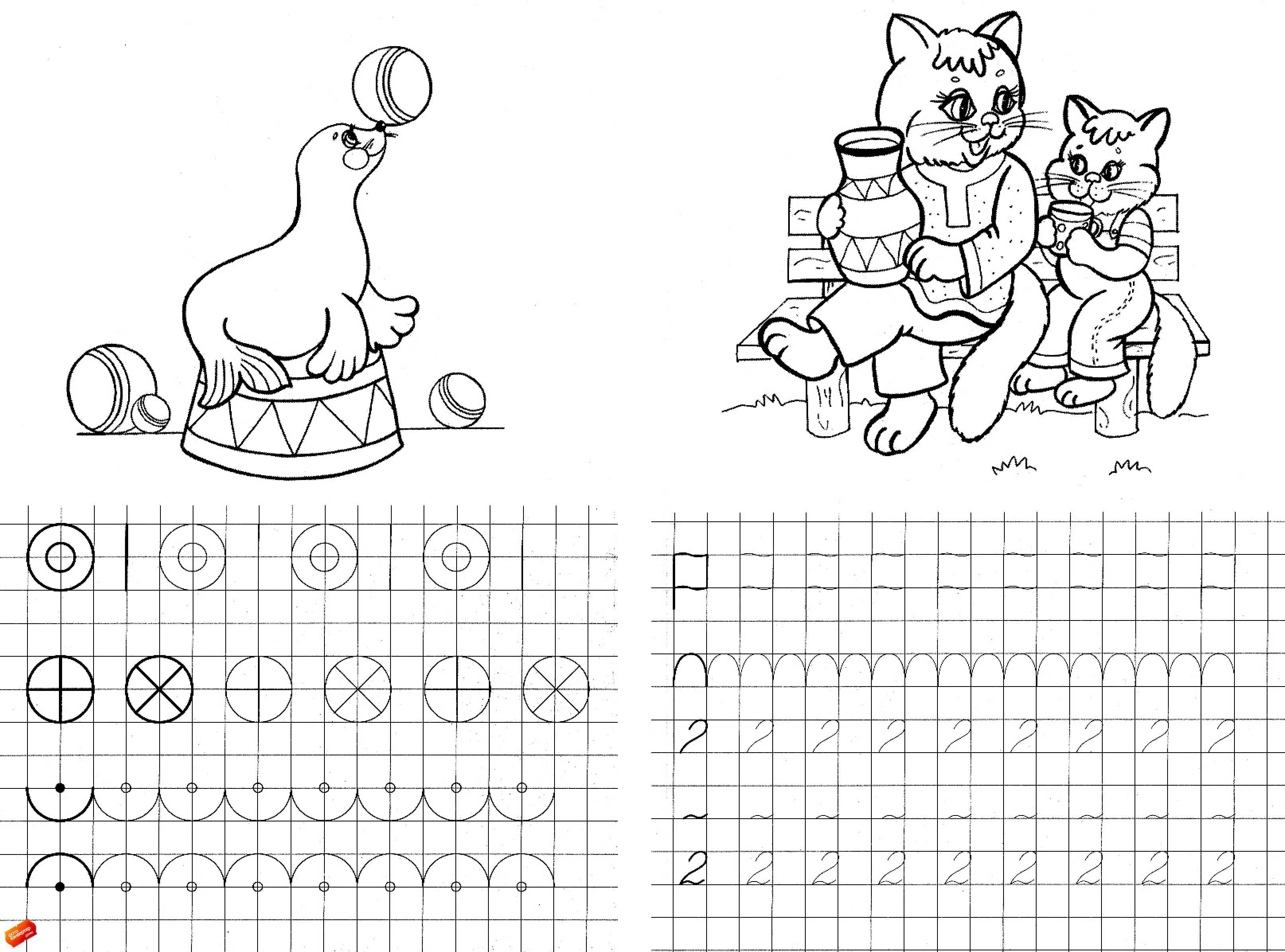 Прописи цифра 2, раскраски два котенка на лавочке, тюлень в цирке играет с мячиками