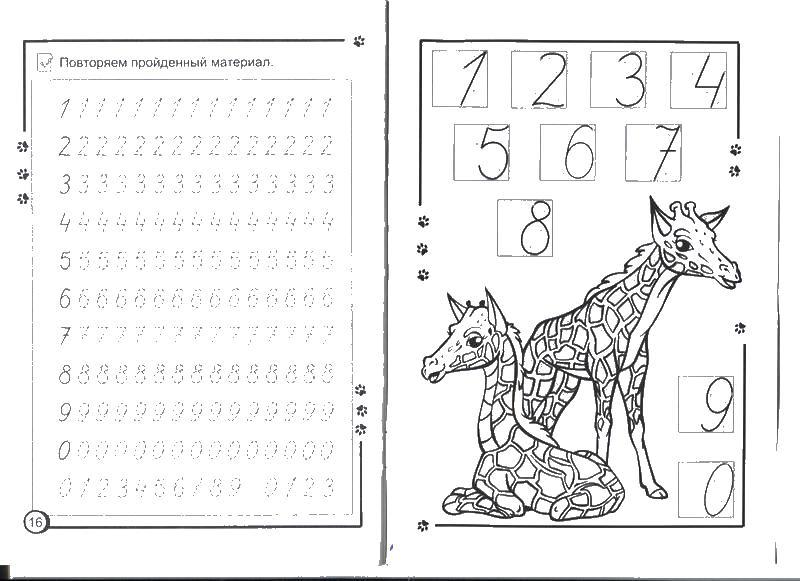 Прописи цифры от 0 до 9, раскраска жирафы