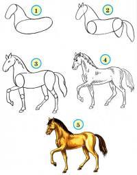 Нарисовать поэтапно животных, лошадь
