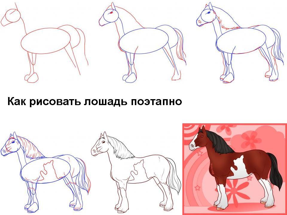 Нарисовать поэтапно животных, лошадка