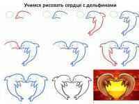 Нарисовать поэтапно животных, сердце с дельфинами