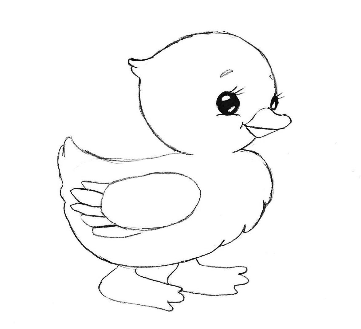 Нарисовать поэтапно животных, утенок