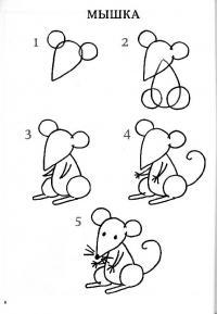 Нарисовать поэтапно животных, мышка