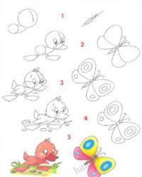 Нарисовать поэтапно животных, утенок и бабочка