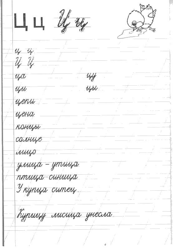 Прописи слоги с буквой ц
