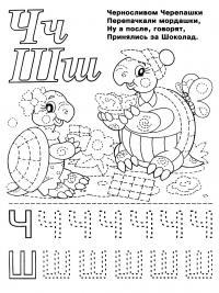 Раскраски алфавит, буквы ч и ш, черепашки с шоколадкой