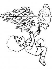 Обучающие раскраски, мальчик с деревом