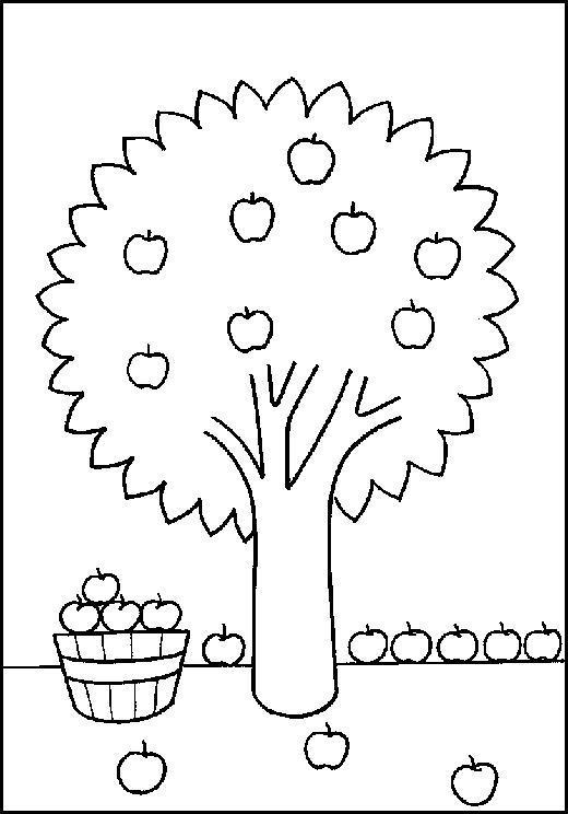 Учимся считать, сколько всего яблок