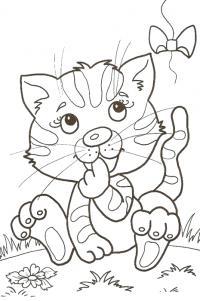 Котенок играет с бантиком