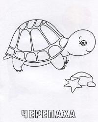Учим животных раскраски