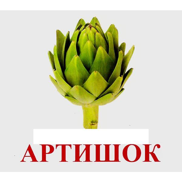 Артишок