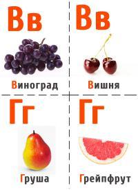 Виноград, вишня, груша