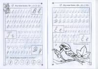 Прописи букв в, г, д, е, ё и раскраска птица сидит на ветке с листиком