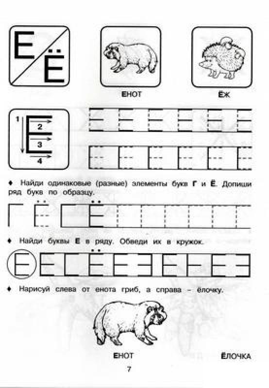 Прописи печатные буквы е, ё, раскраски енот, ежик