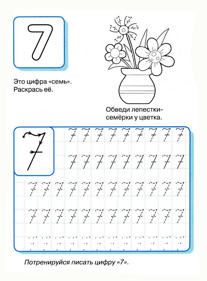 Цифра 7, раскраска цветы в вазе с лепестками семерки