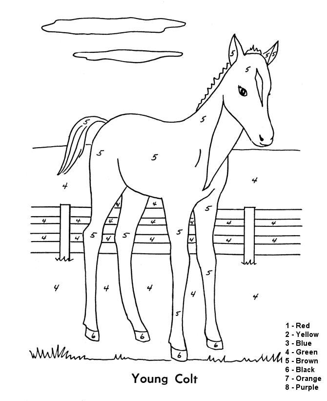Лошадь, раскраска на английском
