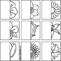 Дорисуй половинки цветочков