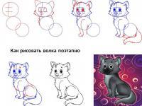 Как нарисовать для детей волчонка поэтапно