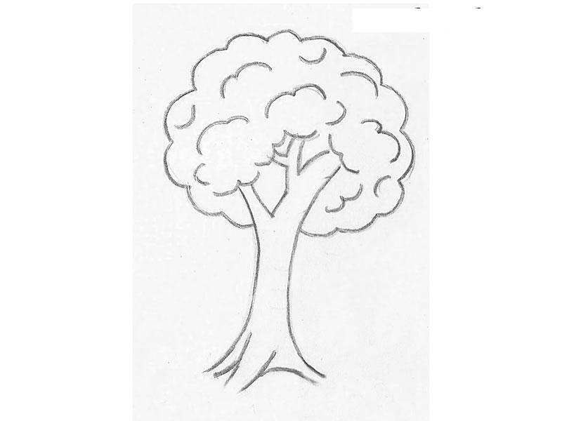 Как нарисовать для детей дерево