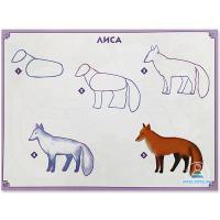 Как нарисовать для детей лису поэтапно
