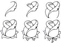 Как нарисовать для детей розу поэтапно