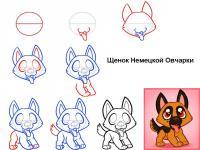 Как нарисовать для детей щенка немецкой овчарки поэтапно