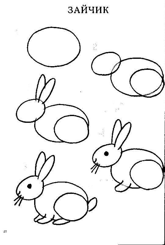 нарисовать поэтапно зайчика по картинке сосудистые звездочки представляют