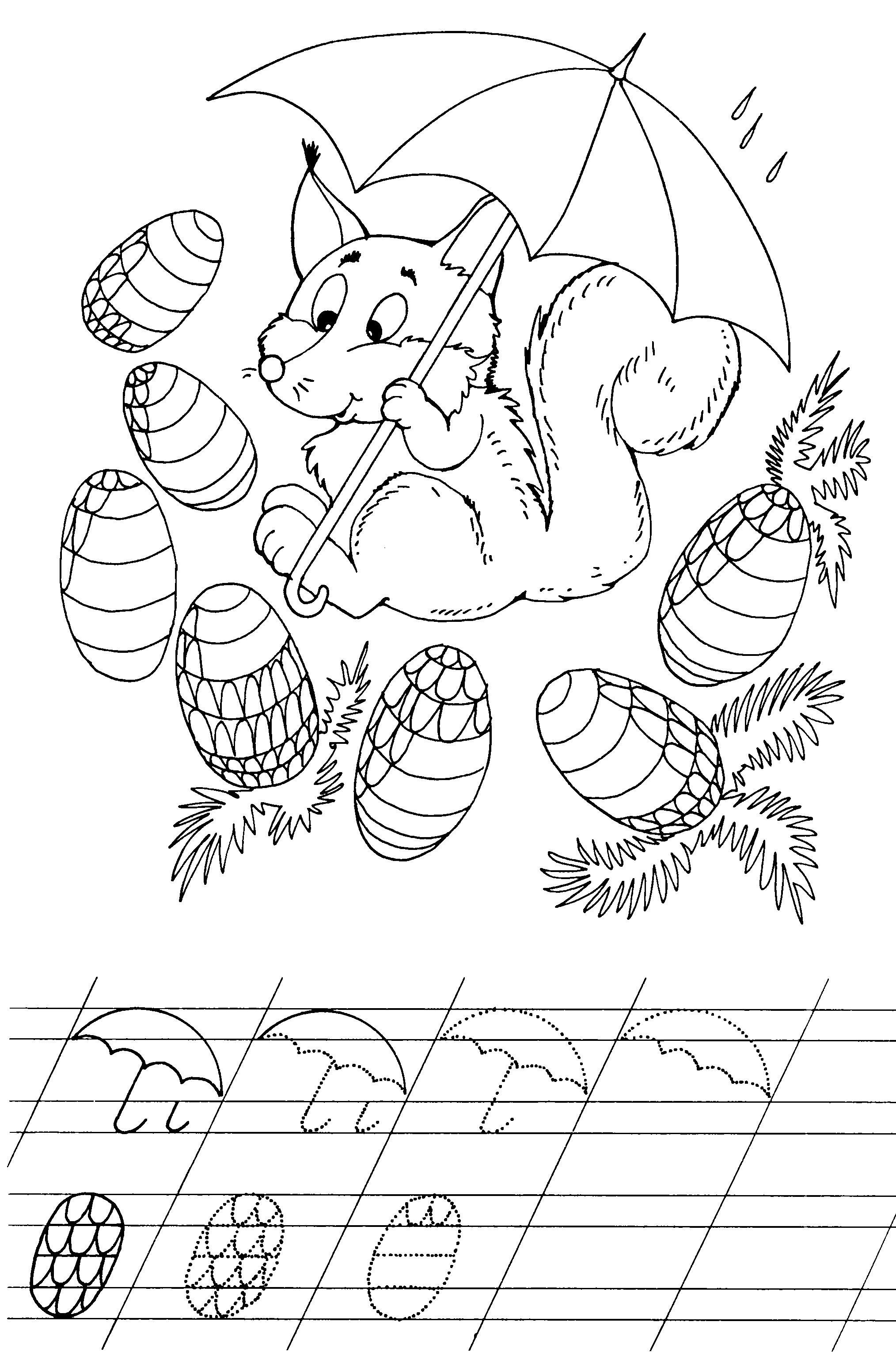 Прописи для самых маленьких, раскраска белочка с шишками