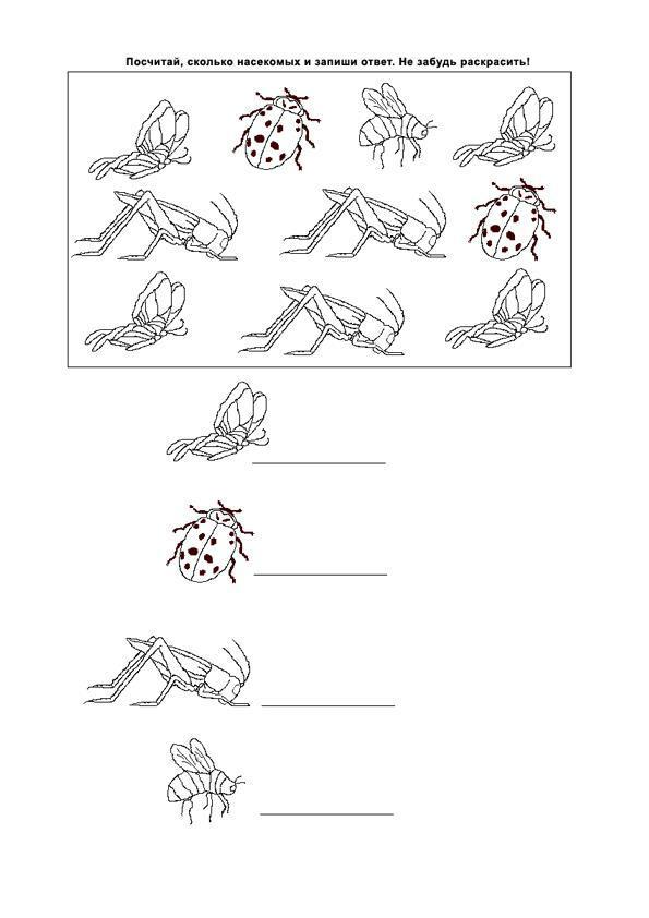 Раскраски счет, посчитай насекомых