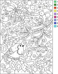 Раскраски по номерам, птичка на елочке