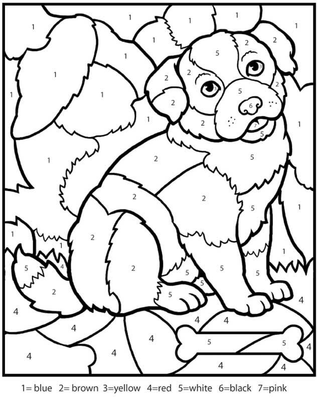 Раскраски по номерам, собака с косточкой