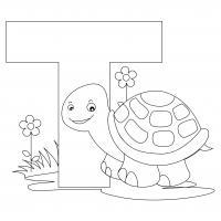 Буква т, черепаха