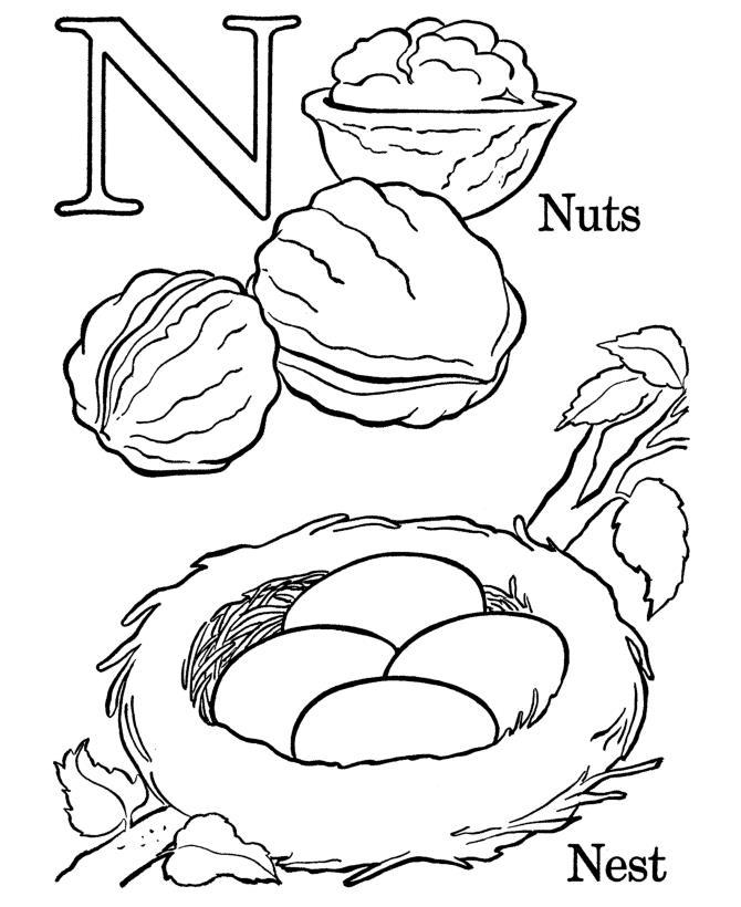 Буква n, орехи, гнездо