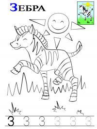 Буква з, зебра
