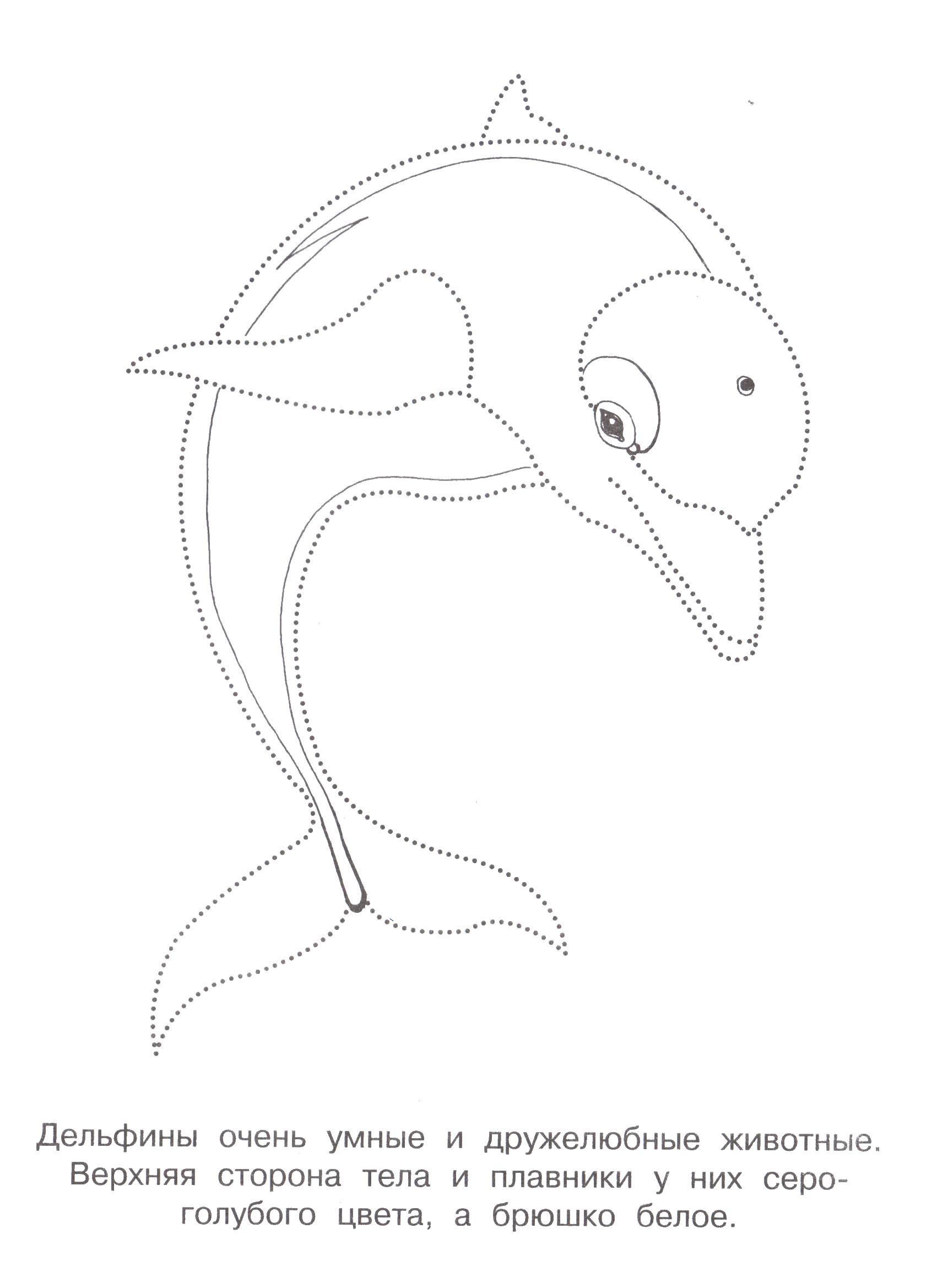 Соедини точки чтоб получился дельфин