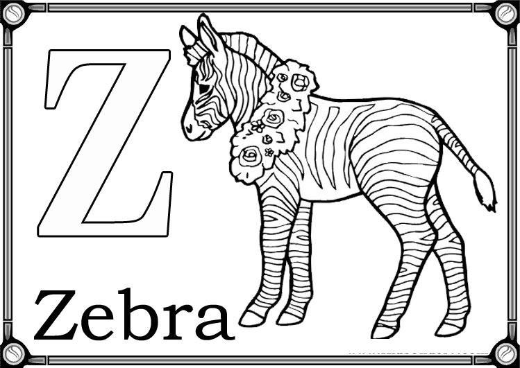 Буква z, зебра