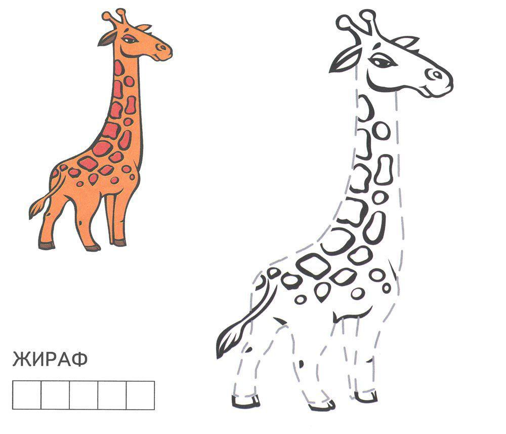 Раскрась по образцу, жираф