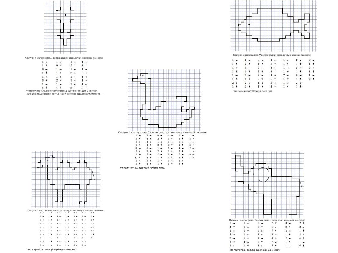 Графический диктант, цветок, рыбка, лебедь, верблюд, слон