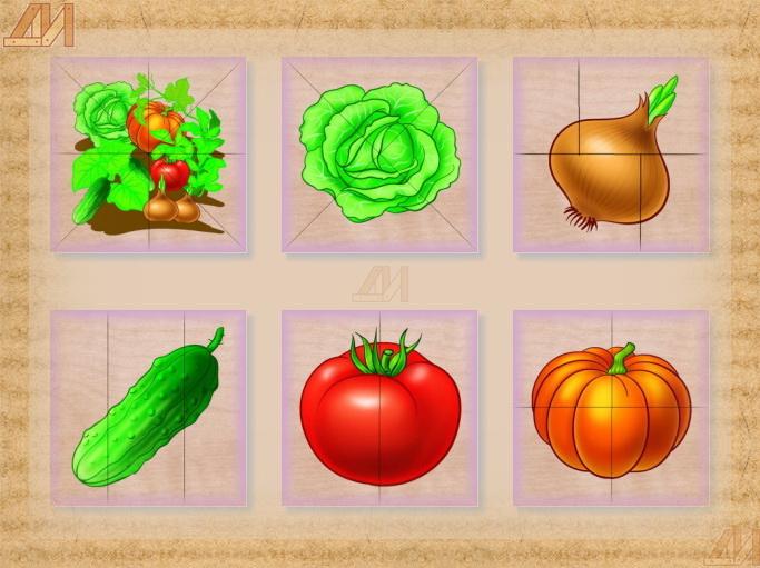 Овощи мазайка, капуста, лук