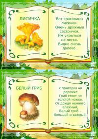 Лисичка и белый гриб